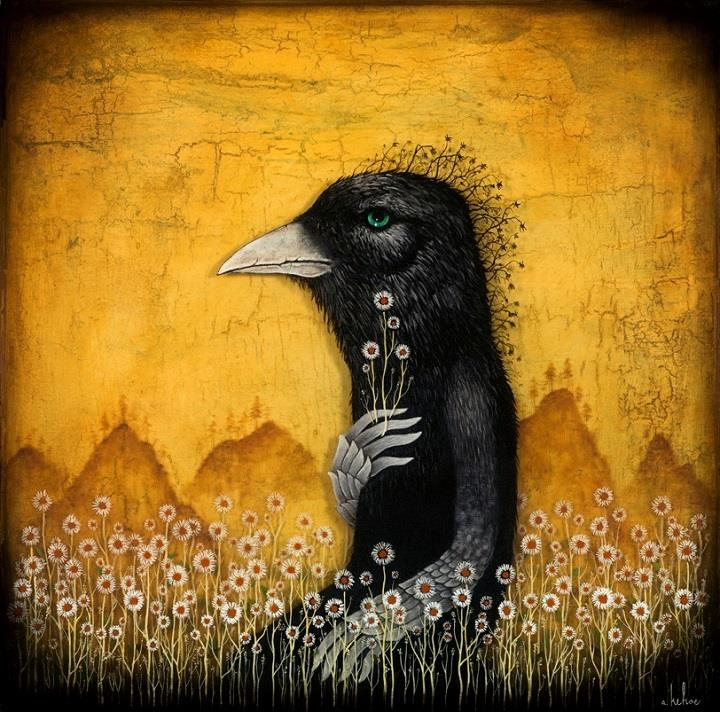 Andy Kehoe - raven