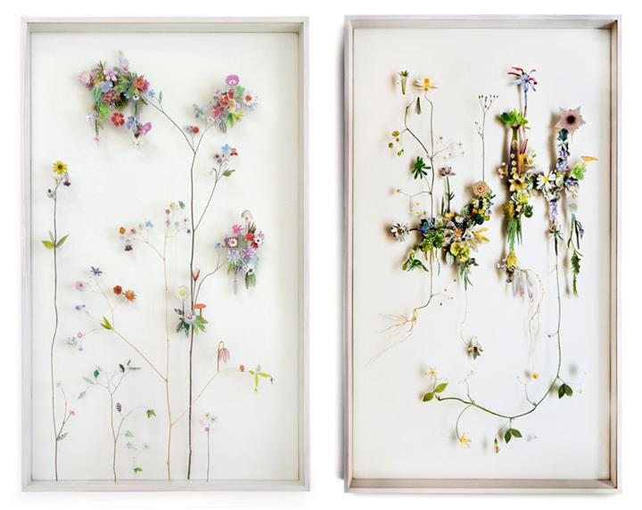 Anne Ten Donkelaar - Flower Constructions A