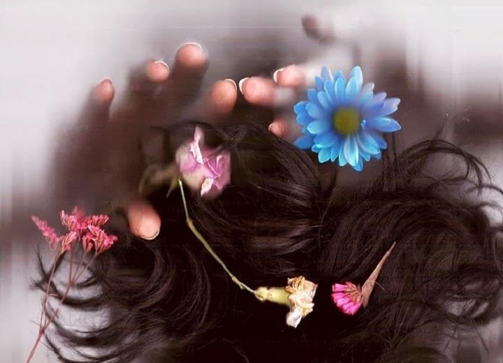 Bella Harris - photo flowers