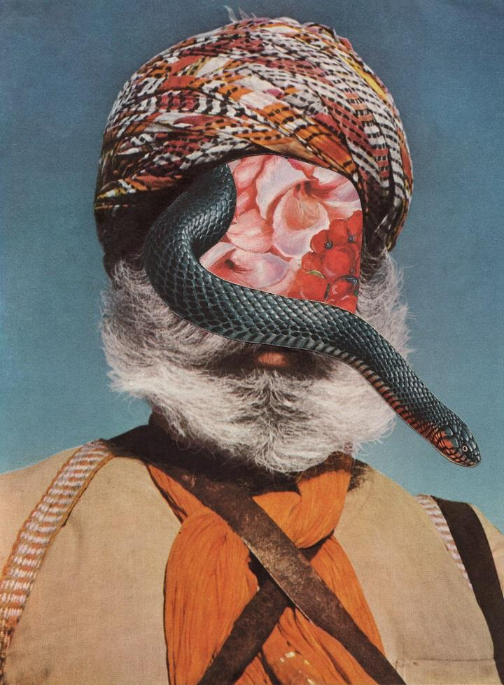 David Delruelle - snakeface collage