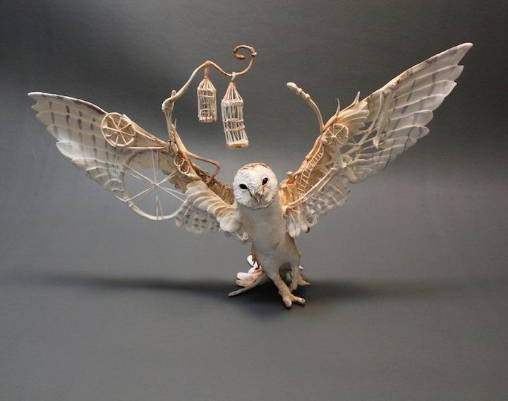 Ellen Jewett - owl