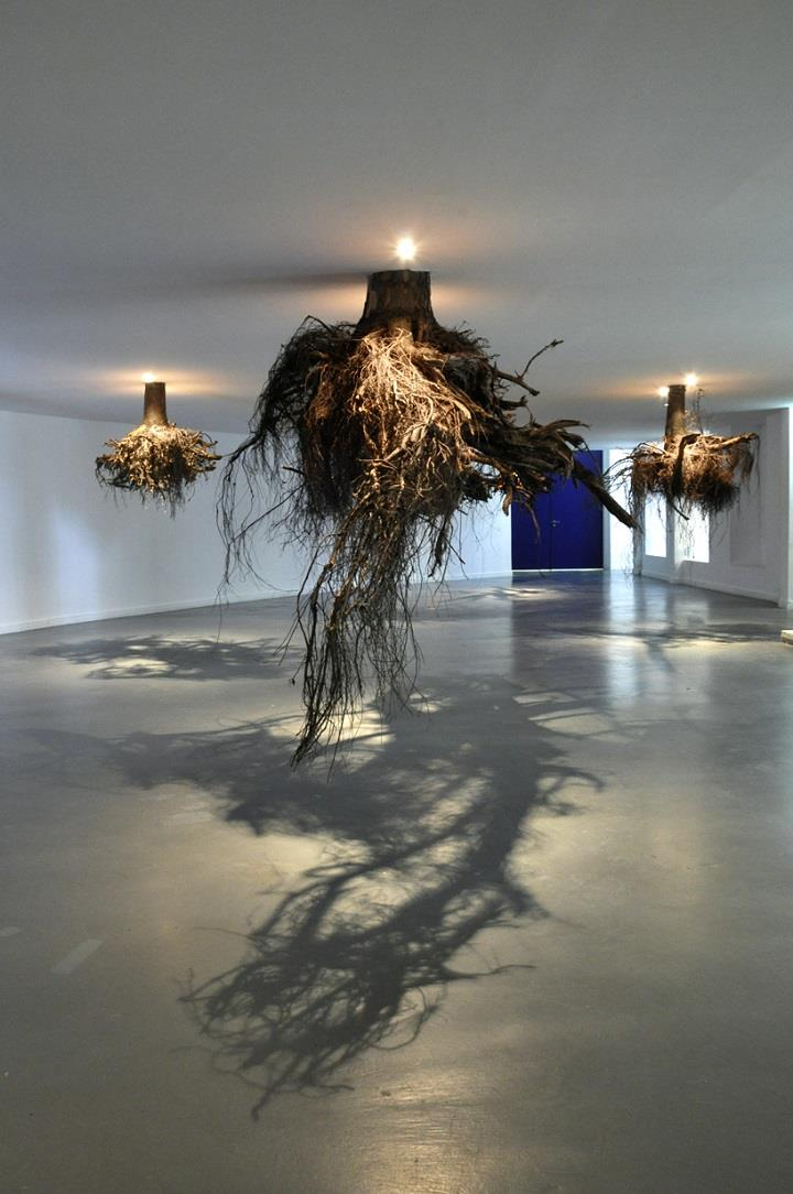 Giuseppe Licari - roots down from ceiling
