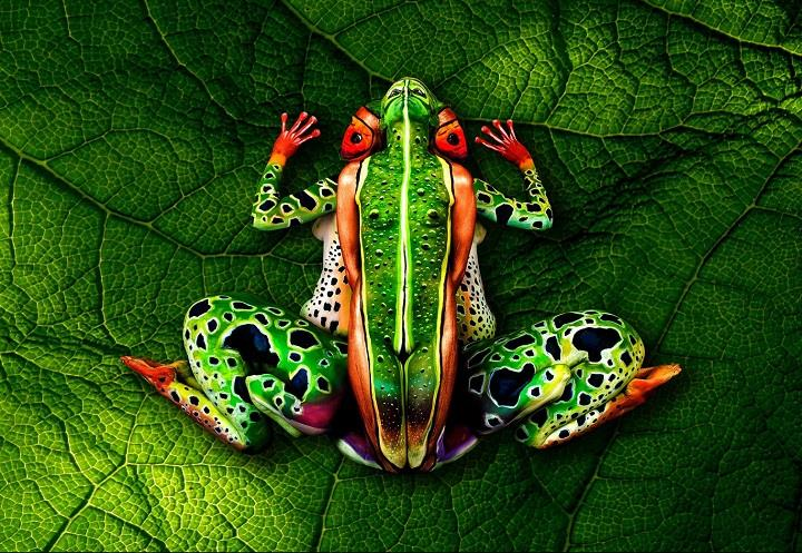 Johannes Stötter - Incredible Body Paintings