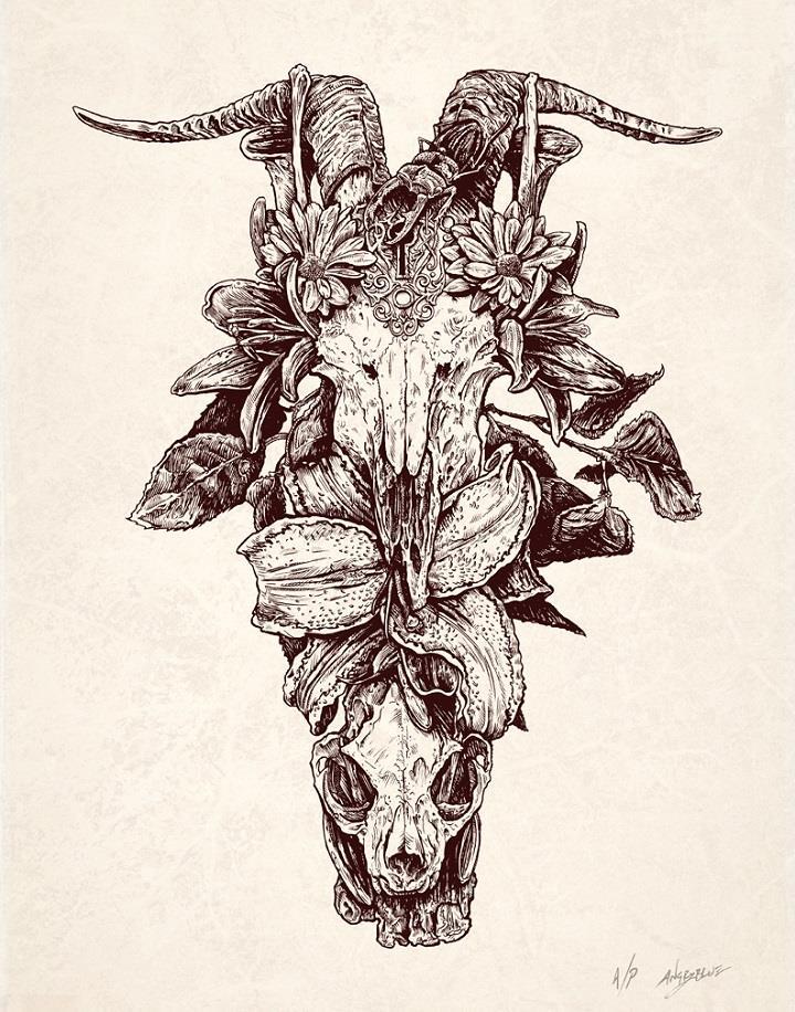 Justin Kamerer - skull