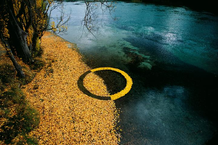 Martin Hill - Autumn-Leafs Circle
