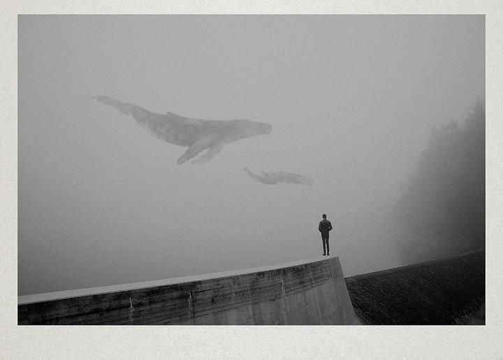 Martin Vlach - art