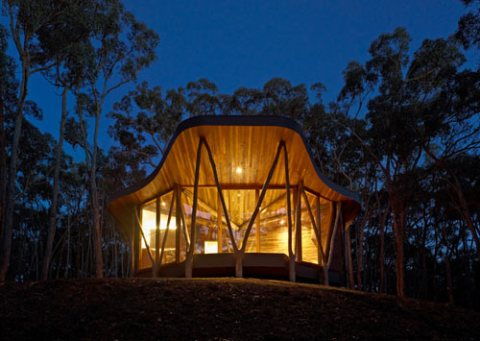 Paul Morgan Architects: Trunk House
