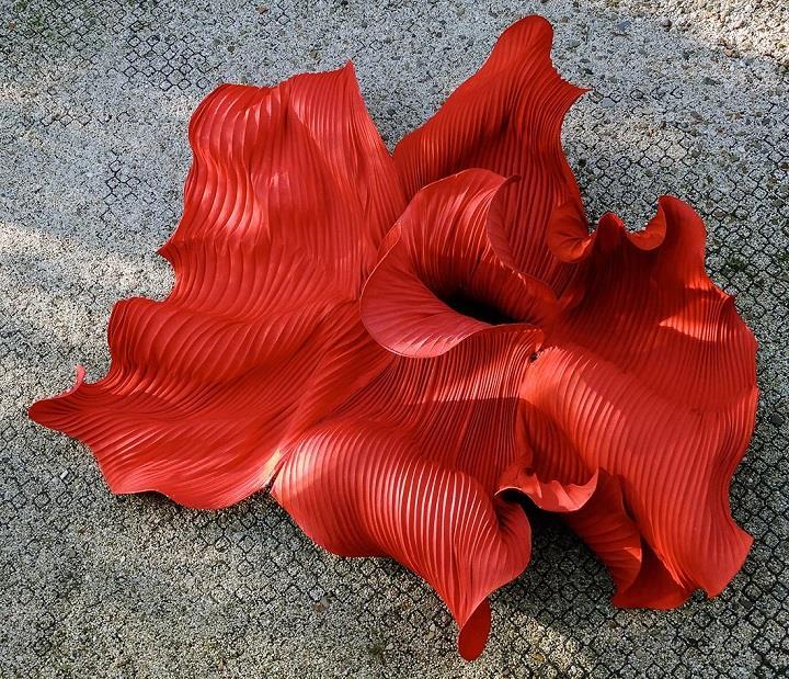Peter Gentenaar - red
