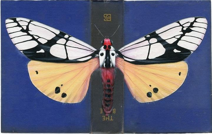 Rose Sanderson - Butterflies on Book Covers