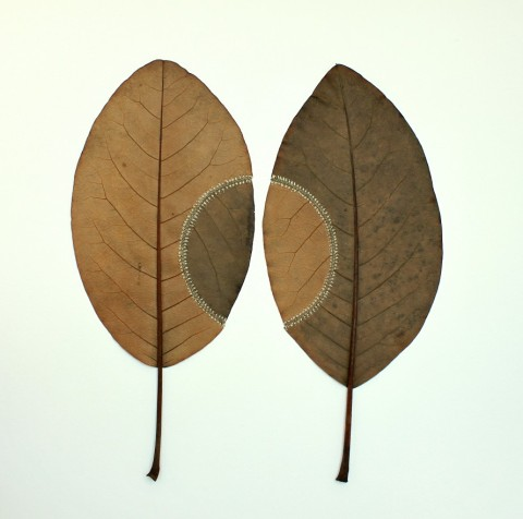Susanna Bauer: Embroidered Leaves | Feather Of Me