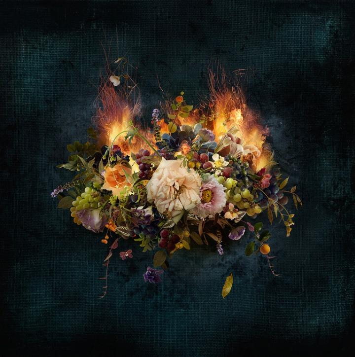 Ysabel LeMay - burning flowers